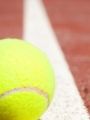 Stage tennis et multisport
